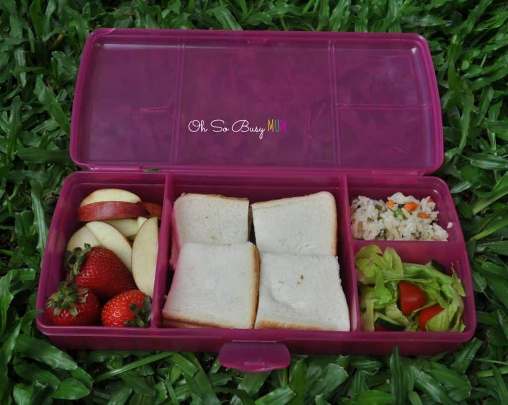 New Tupperwartwo sandwich keepers